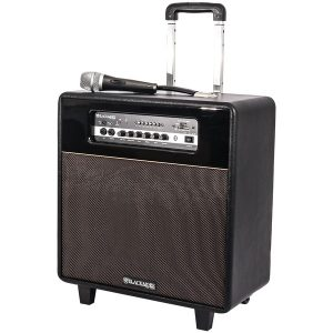 Blackmore Pro Audio BRS-2009 Portable 3-Way PA System
