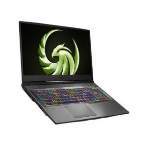 MSI Alpha 17 A4DEK-011 17.3 inch AMD Ryzen 7 4800H 2.9-4.2GHz/ 16GB (8G*2) DDR4/ 1TB NVMe SSD/ RX 5600M/ USB3.2/ Windows 10 Gaming Laptop (Aluminum Black)
